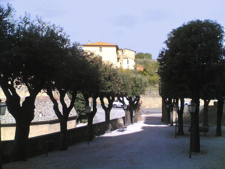 Alantaglio potature realizzazione giardini for Realizzazione giardini firenze